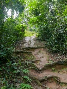 Der glitschige Pfad hinauf von der Quelle ins Dorf.